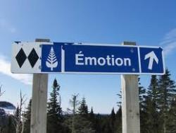 Síla Emocí